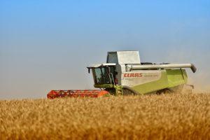 Сценарий ко Дню сельского хозяйства и перерабатывающей промышленности